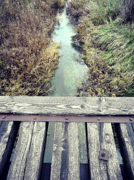 Photograph - Love Sits Here Sometimes by Cyryn Fyrcyd