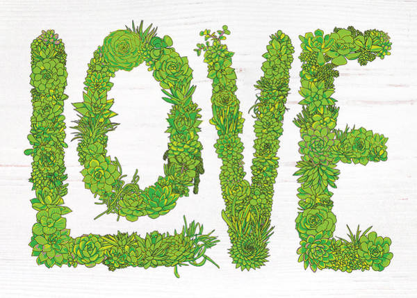 Painting - Love Succulent White Background by Jen Montgomery