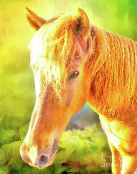 Icelandic Digital Art - Lovely Chestnut Pony by Elisabeth Lucas