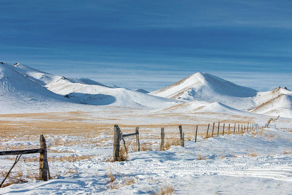 Photograph - Lovely Rural Lloyd by Todd Klassy