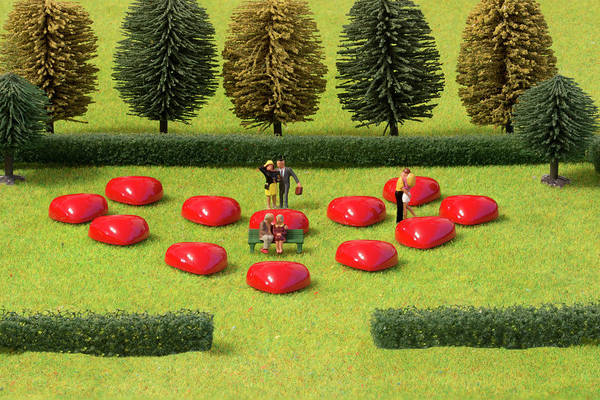 Photograph - Lovers Garden by Steve Purnell