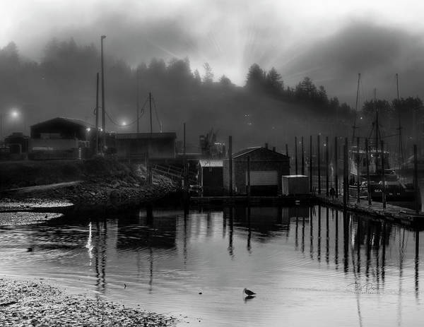 Photograph - Low Tide Foggy by Bill Posner