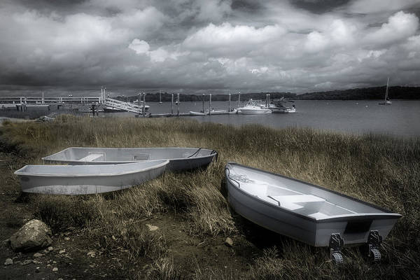 Photograph - Low Tide Grasses by Glenn DiPaola
