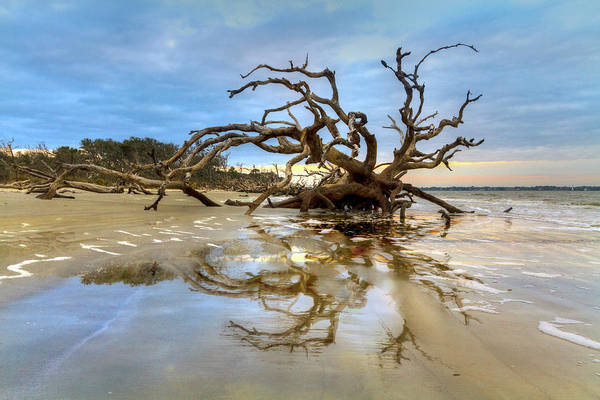 Photograph - Low Tide Reflections by Debra and Dave Vanderlaan