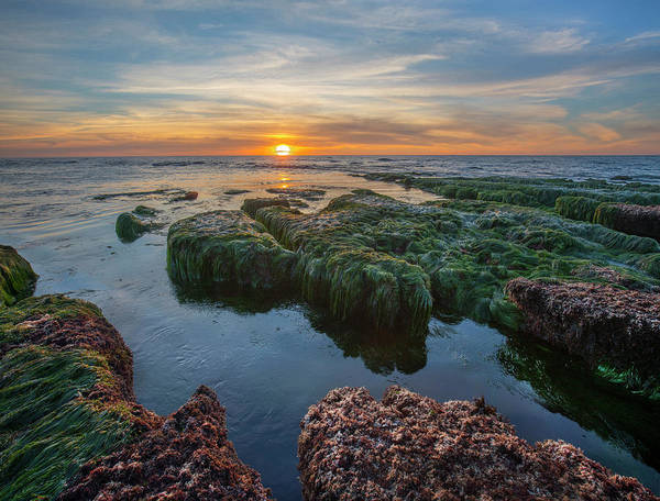 Wall Art - Photograph - Low Tide Sunset Over Intertidal Zone by