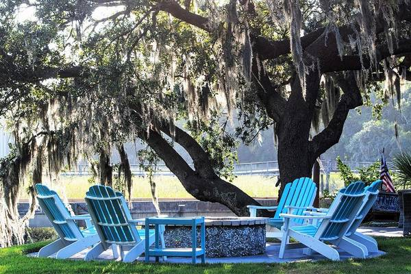 Wall Art - Photograph - Lowcountry Lifestyle by Mary Ann Artz