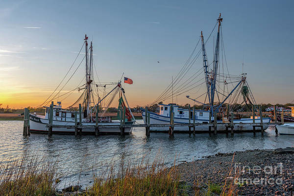 Photograph - Lowcountry Shrimping Life by Dale Powell