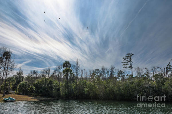 Photograph - Lowcountry Summer Sky by Dale Powell