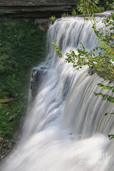 Photograph - Lower Falls 3 by Phil Perkins
