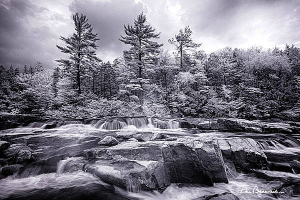 Photograph - Lower Falls 7249 by Dan Beauvais