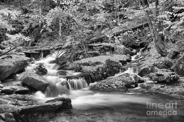 Photograph - Lower Sanderson Brook Falls Black And White by Adam Jewell