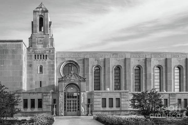Illinois Art Photograph - Loyola University Cudahy Library by University Icons