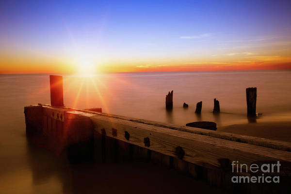Wall Art - Photograph - Ludington State Park by Todd Bielby