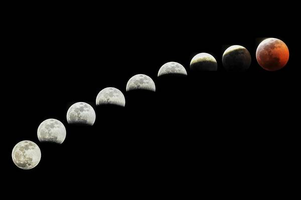 Photograph - Lunar Eclipse Super Blood Wolf Moon  by NaturesPix
