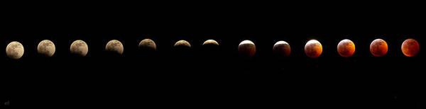 Wall Art - Photograph - Lunar Eclipse by Thomas Ashcraft
