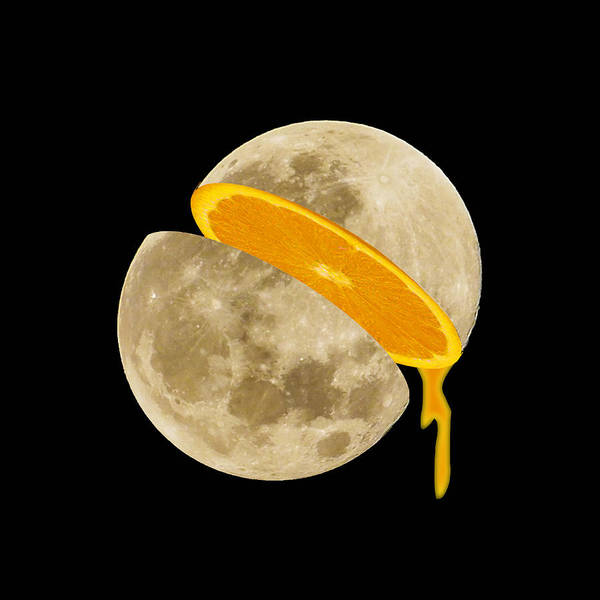 Painting - Lunar Moon Fruit by Tony Rubino