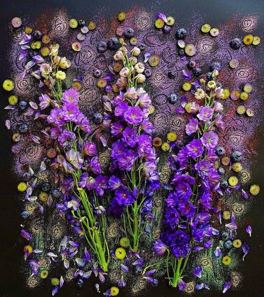 Photograph - Lupine And Blueberries  by Sarah Phillips