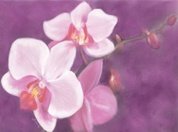 Painting - Luxurious Petals by Sannel Larson