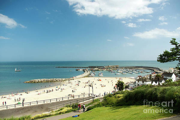 Wall Art - Photograph - Lyme Regis Beach And Harbour by John Edwards