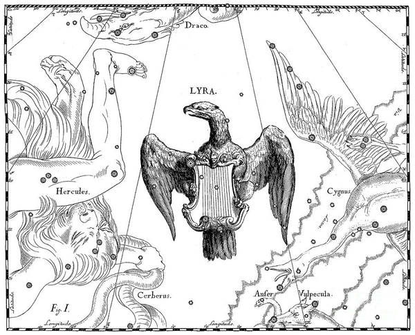 Wall Art - Drawing - Lyra, The Boreal Constellation Of The Lyre by Johann Hevelius