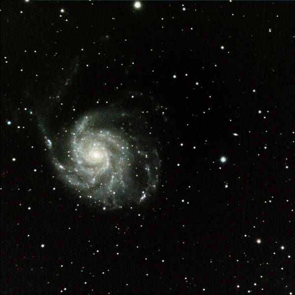 Pinwheel Photograph - M-101, The Pinwheel Galaxy by A. V. Ley
