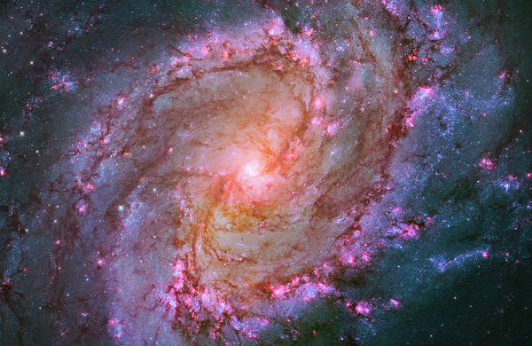Photograph - M83 Spiral Galaxy by Paul W Faust - Impressions of Light
