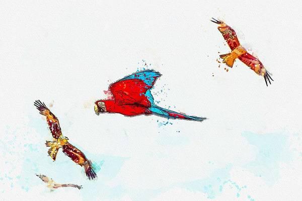 Wall Art - Painting - Macaw -  Watercolor By Ahmet Asar by Ahmet Asar