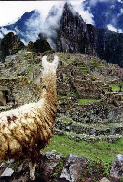 Photograph - Machu Picchu Peru by Rick Veldman
