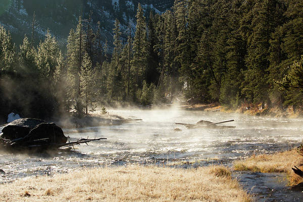 Madison River Morning Art Print