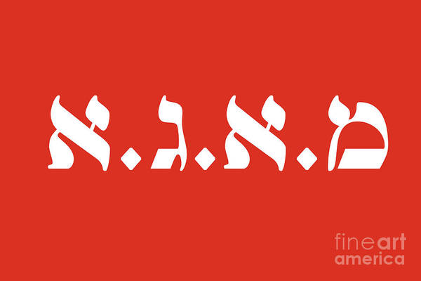 Photograph - Maga In Hebrew - This Is Maga Country by Doc Braham