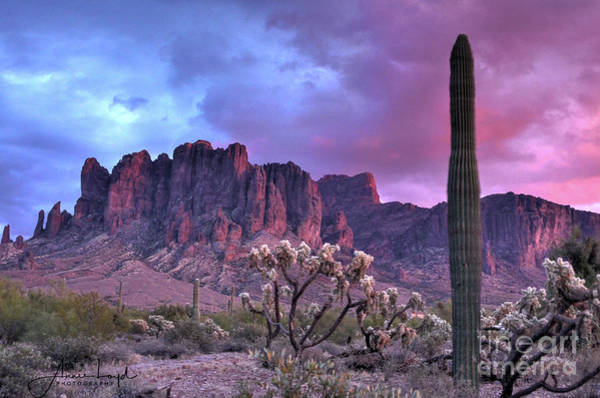 Wall Art - Photograph -  Superstition  Mountain In Magenta by Ann Loyd