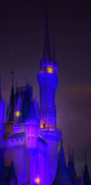 Wall Art - Photograph - Magic Kingdom Castle by Mark Andrew Thomas