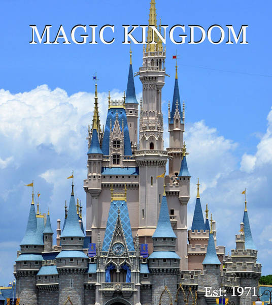 Wall Art - Photograph - Magic Kingdom Classic Castle Poster Work A by David Lee Thompson