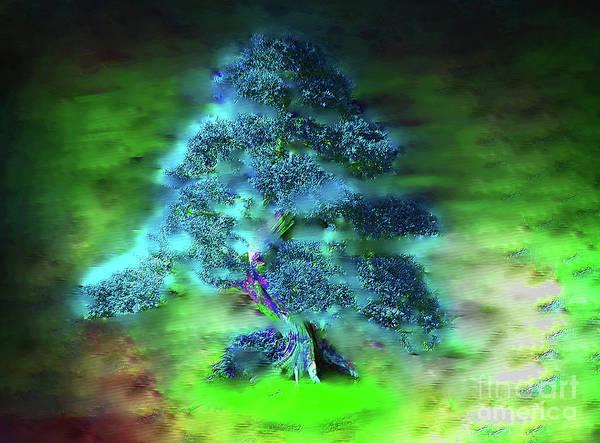 Bonsai Tree Digital Art - Magical Bonsai Tree In The Mist by Roy Jacob