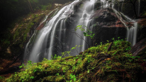 Photograph - Magical Mystical Mossy Waterfall by Mike Koenig