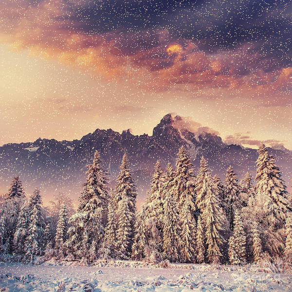 Wall Art - Photograph - Magical Winter Landscape, Background by Standret