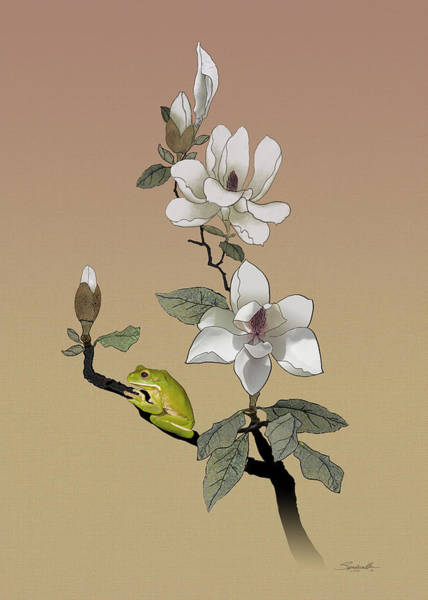 Wall Art - Digital Art - Magnolia And Tree Frog by M Spadecaller