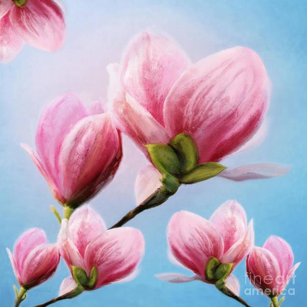 Digital Art - Magnolia by Anne Vis