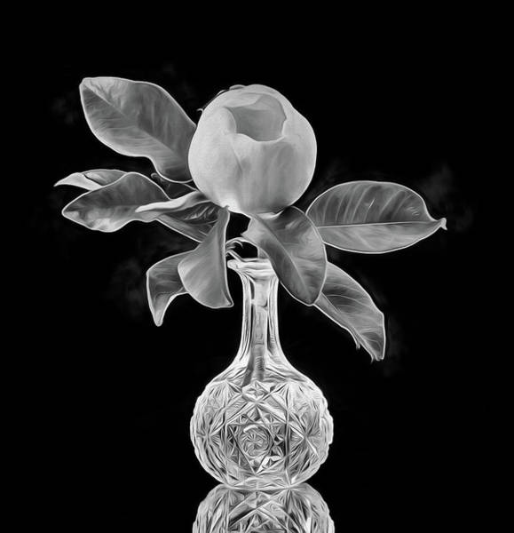 Digital Art - Magnolia Bloom And Crystal Still Life Black And White by JC Findley