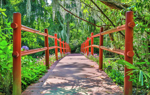 Wall Art - Photograph - Magnolia Plantation Red Bridge by Dan Sproul