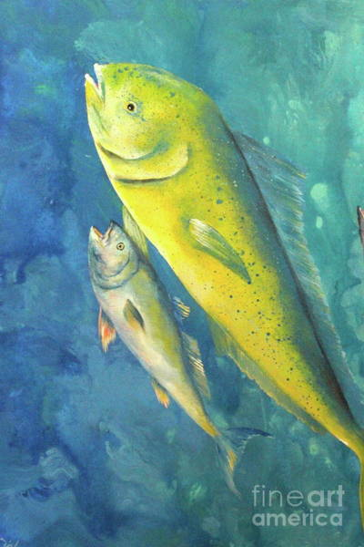 Wall Art - Painting - Mahi Mahi Fish by Gabriela Valencia