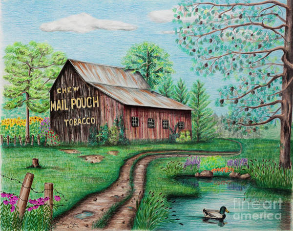 Barn Drawing - Mail Pouch Tobacco Barn by Lena Auxier