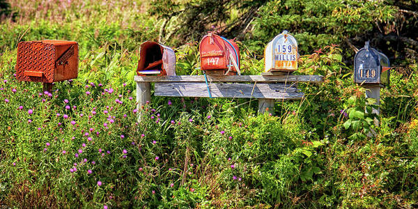 Photograph - Mailboxes In Nova Scotia by Tatiana Travelways