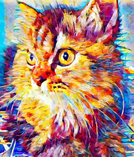 Wall Art - Painting - Maine Coon 2 by Chris Butler