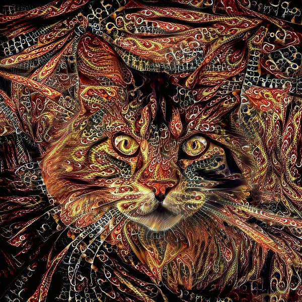 Digital Art - Maine Coon Cat by Peggy Collins