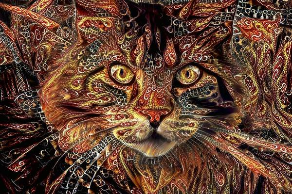Digital Art - Maine Coon Cat Rectangular by Peggy Collins