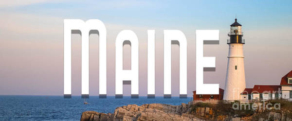 Wall Art - Photograph - Maine Mug by Edward Fielding