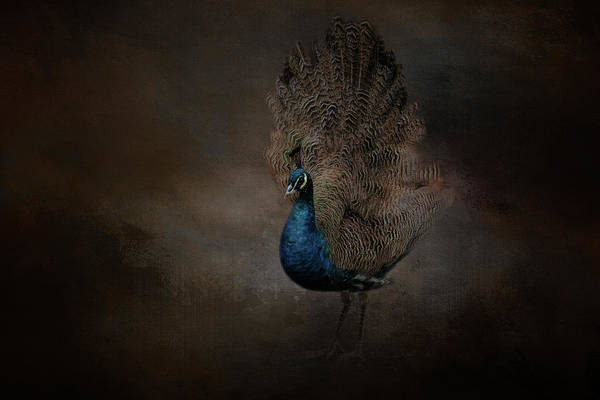 Photograph - Majestic Blue Beauty  by Kelley Parker