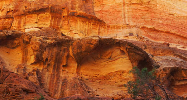 Wall Art - Photograph - Majestic Cliff Erosion by Ginger Repke