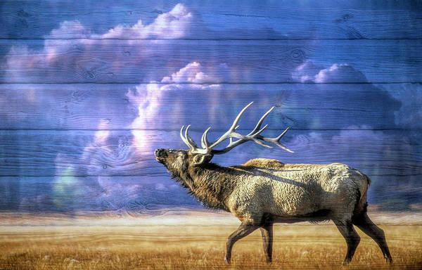 Digital Art - Majestic Elk In Wood Textures by Debra and Dave Vanderlaan